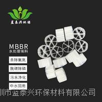 蓝泰兴污水净化环保材料移动悬浮床生物填料MBBR填料流化床水处理生物填料 HF-MBBR