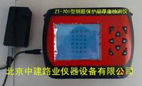 钢筋位置测定仪 ZT701型