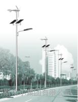 新农村LED路灯 SLE-001