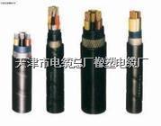 NH-VV22耐火铠装电力电缆 NH-VV22