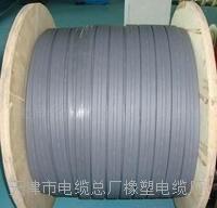 天津小猫牌防水电缆 JHSB 3*120