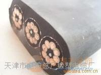 天津小猫牌JHSB电缆 JHSB  3*16
