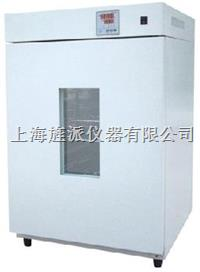 电热恒温培养箱 DH2500AB