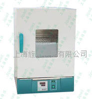 GRX-9203A热气氛消毒箱干烤**箱 GRX-9203A