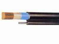 485铠装屏蔽双绞线ASTP-120  18AWG国标型号 485铠装屏蔽双绞线ASTP-120  18AWG国标型号