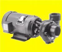 SERFILCO速菲科 RC系列水平卧式泵 SERFILCO速菲科 RC系列水平卧式泵