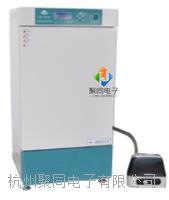 海南现货人工气候箱PRX-1000A自产自销 PRX-1000A