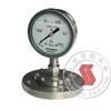 Y-150BF/Z/MF(316)/316,全不锈钢隔膜压力表 Y-150BF/Z/MF(316)/316