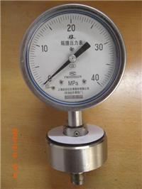全不锈钢隔膜压力表Y-100BF/Z/MF(316)/316上海自动化仪表四厂 Y-100BF/Z/MF(316)/316