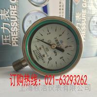 Y60BF不锈钢压力表