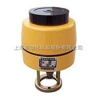 DKZ-310上海仪表十一厂/自仪十一厂DKZ-310直行程电动执行机构说明书