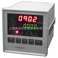 SHOHY-05A上海自动化仪表厂SHOHY-05A压力峰值仪