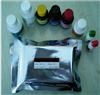 CAS:5367-28-2,2-硝基-5-氯甲苯現貨供應