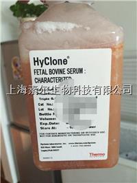 Hyclone|Gibco原装进口优级胎牛血清FBS