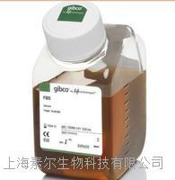 16050-122胎牛血清(GIBCO)  16050-122胎牛血清