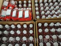 GIBCO DMEM(高糖)含丙酮酸钠12800017现货 12800017