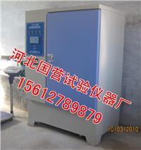 标准恒温恒湿养护箱 YH-40B型