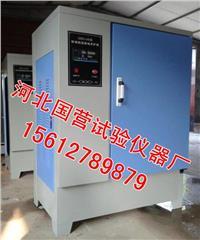 SHBY-40B型标准恒温恒湿养护箱