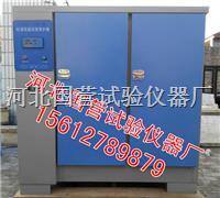 混凝土标准养护箱 SHBY-60