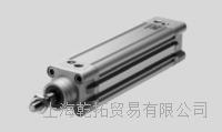现货FESTO标准型气缸DNC-100-100-PPV-A DNC-100-100-PPV-A