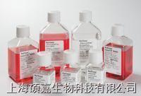 高糖DMEM培养基、含4.0mM L-谷氨酰胺,不含丙酮酸钠 SH30022.01B