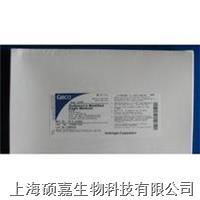 DMEM(低糖),干粉 31600-034