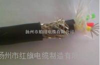 CJPJ85/NSC 船用电缆 CJPJ85/NSC 船用电缆