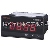 16路带打印温度巡检仪 XMTJ1601WT/1602WT