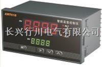 4路可编程温湿度控制器 XMTHKPWT