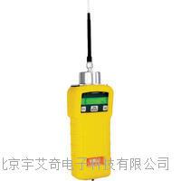 台式三氯化硼报警器厂家 YI0173DD