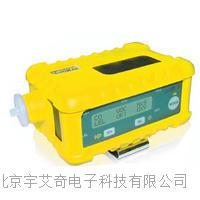 在线式氩气测定仪批发 YI0373CD