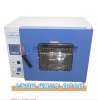 喆钛商品DHG-9123A电热鼓风干燥箱