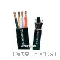 天皋电气YB YBF YBZ硅橡胶扁电缆 天皋电气YB YBF YBZ硅橡胶扁电缆