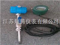 分体型热式气体质量流量计 XT-RSL