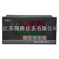 智能流量积算仪 XT-XMJA