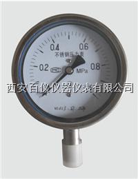 YTF-100,不锈钢压力表 YTF-100