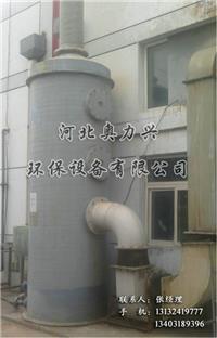 硫化氢处理塔 BJS