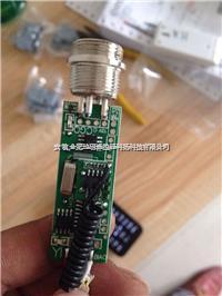 地磅遥控器 3190-DS3调频,防屏蔽,地磅遥控器