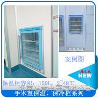 手术室专用保温柜  FYL-YS-150L