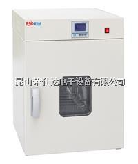 电热鼓风干燥箱 RSD-D