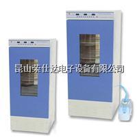 控温控湿柜 RSD-250WS