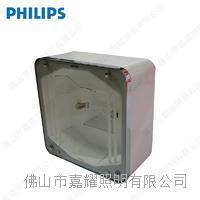 飞利浦户外照明灯具 DCP300-150W应急油站灯具 DCP300-150W MINI300