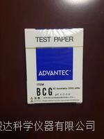 日本原装试纸 BCG