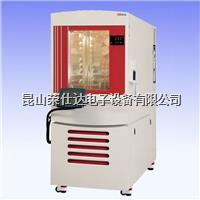 可程式高低温交变试验箱 RSD-HS