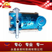 不锈钢电动隔膜泵 DBY-P电动隔膜泵304电动隔膜泵
