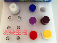 人脂肪分化相关蛋白(ADRP)Elisa试剂盒 96T