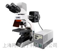 BM2000荧光生物显微镜