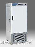 人工气候箱RGX400EF  低温人工气候箱厂家