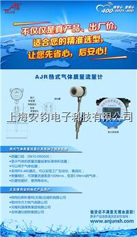 热式气体质量流量计AJR-550
