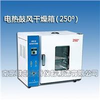 电热鼓风干燥箱250度 LC系列